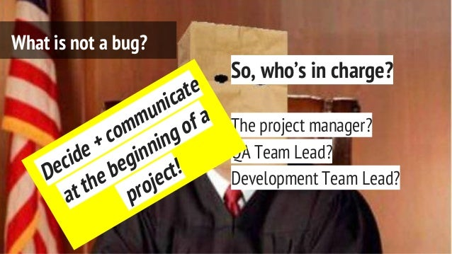 So, who's in charge? The project manager? QA Team Lead? Development Team Lead? What is not a bug? Decide + communicate at ...