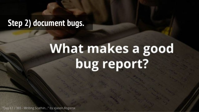 Step 2) document bugs.