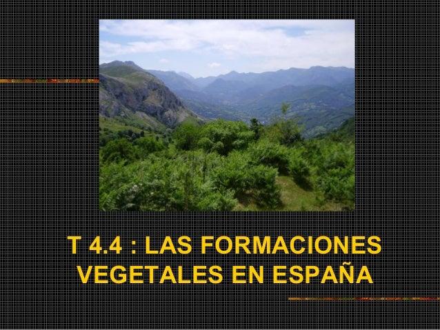 T 4.4 : LAS FORMACIONES VEGETALES EN ESPAÑA