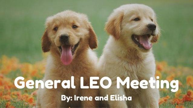 General LEO Meeting By: Irene and Elisha