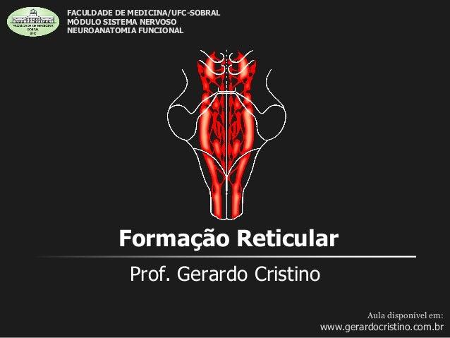Formação Reticular Prof. Gerardo Cristino Aula disponível em: www.gerardocristino.com.br FACULDADE DE MEDICINA/UFC-SOBRAL ...