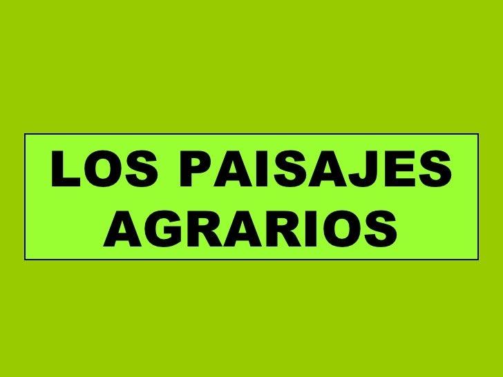 LOS PAISAJES AGRARIOS