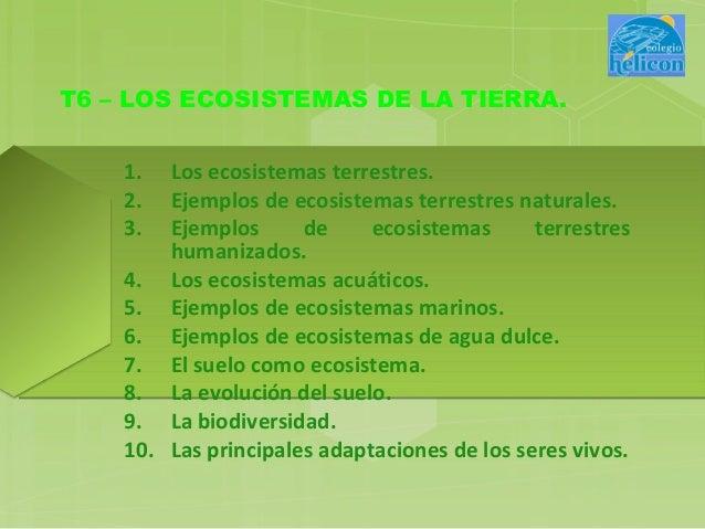 T6 – LOS ECOSISTEMAS DE LA TIERRA.    1.  Los ecosistemas terrestres.    2.  Ejemplos de ecosistemas terrestres naturales....