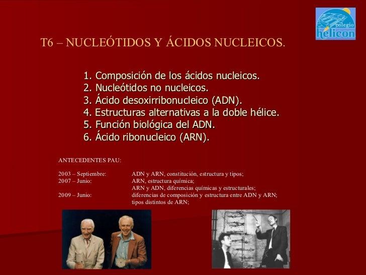 1. Composición de los ácidos nucleicos. 2. Nucleótidos no nucleicos. 3. Ácido desoxirribonucleico (ADN). 4. Estructuras al...