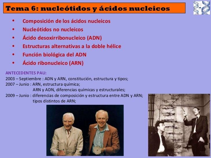 Tema 6: nucleótidos y ácidos nucleicos <ul><li>Composición de los ácidos nucleicos </li></ul><ul><li>Nucleótidos no nuclei...