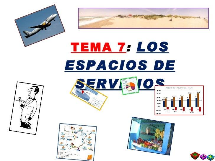 TEMA 7 :  LOS ESPACIOS DE SERVICIOS