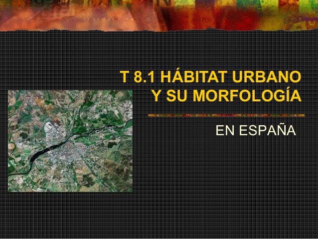 T 8.1 HÁBITAT URBANO Y SU MORFOLOGÍA EN ESPAÑA