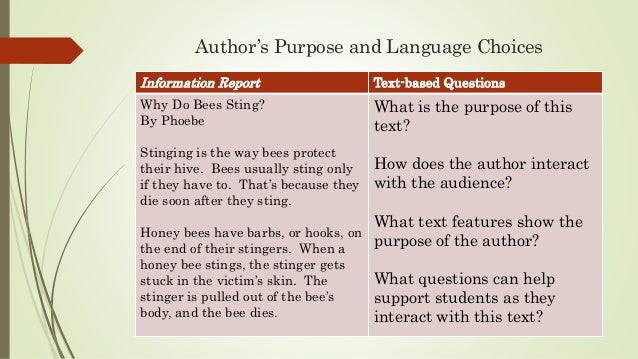 meaning of report text