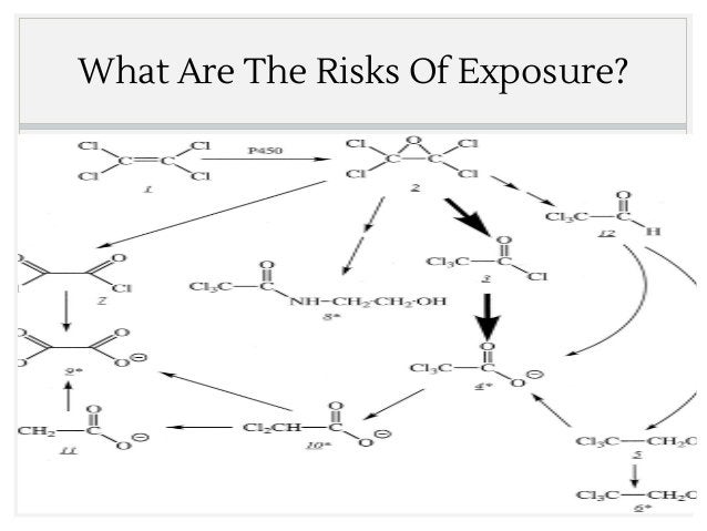 What Are The Risks Of Exposure?