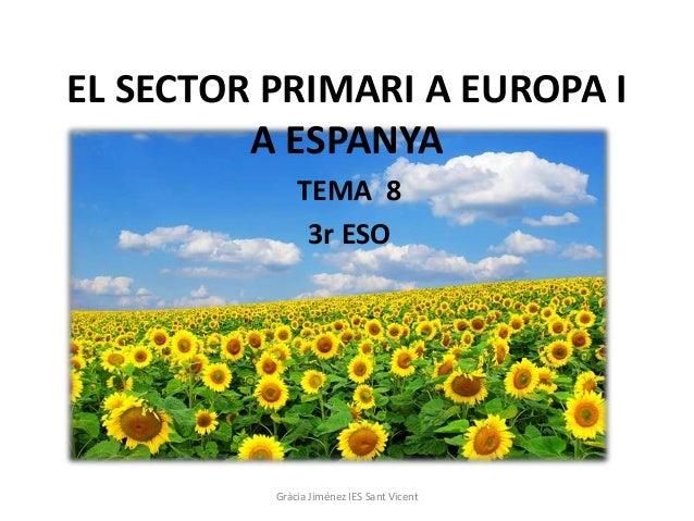 EL SECTOR PRIMARI A EUROPA I         A ESPANYA              TEMA 8               3r ESO          Gràcia Jiménez IES Sant V...