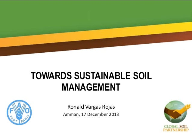 TOWARDS SUSTAINABLE SOIL MANAGEMENT Ronald Vargas Rojas Amman, 17 December 2013