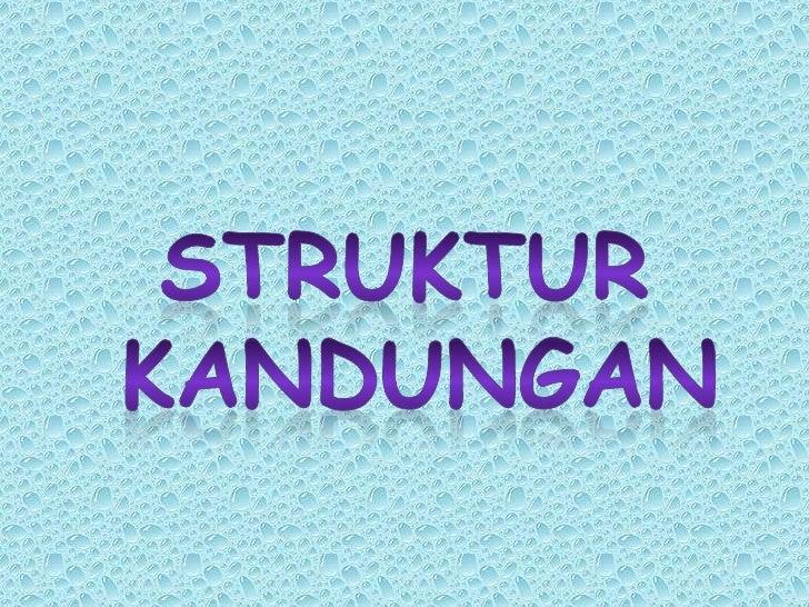 STRUKTUR KANDUNGAN<br />