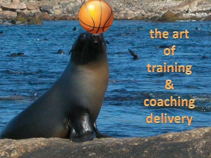 the art <br />of <br />training <br />& <br />coaching delivery<br />