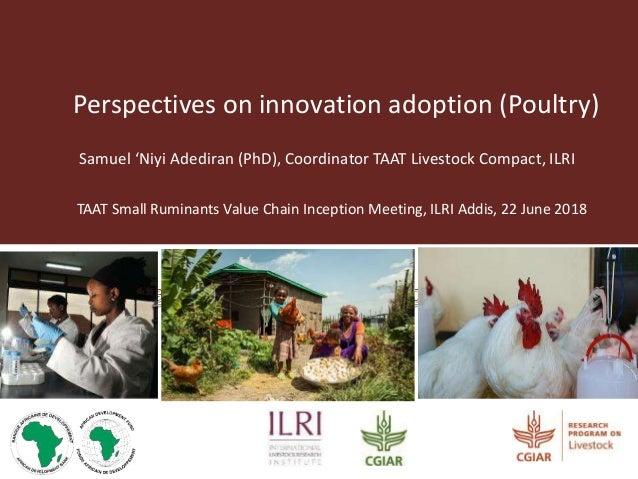 Perspectives on innovation adoption (Poultry) Samuel 'Niyi Adediran (PhD), Coordinator TAAT Livestock Compact, ILRI TAAT S...