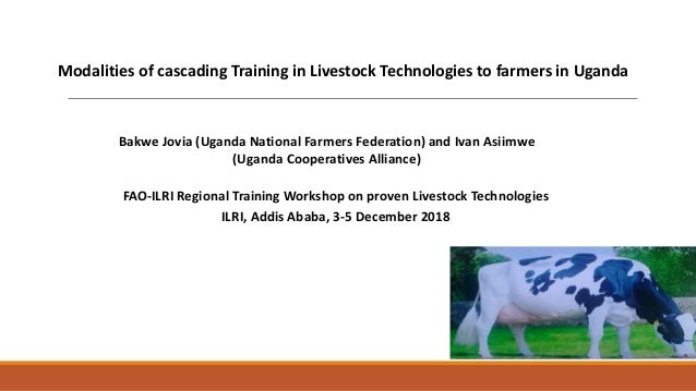 Modalities of cascading Training in Livestock Technologies to farmers in Uganda FAO-ILRI Regional Training Workshop on pro...