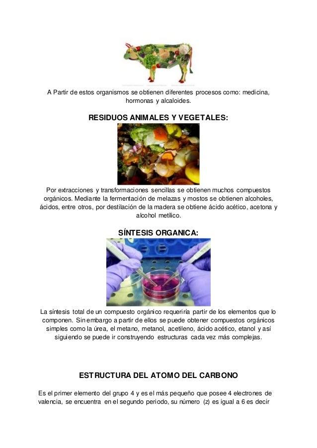 Tabla periodica organismos animales y vegetales 7 urtaz Choice Image