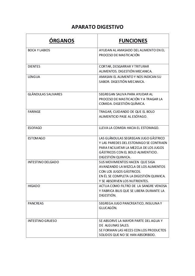 Tabla resumen aparato digestivo y funciones