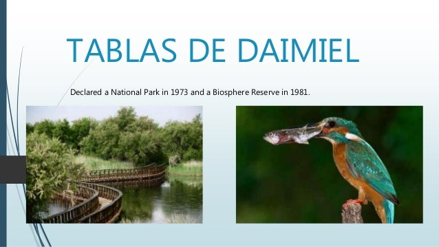 TABLAS DE DAIMIEL Declared a National Park in 1973 and a Biosphere Reserve in 1981.