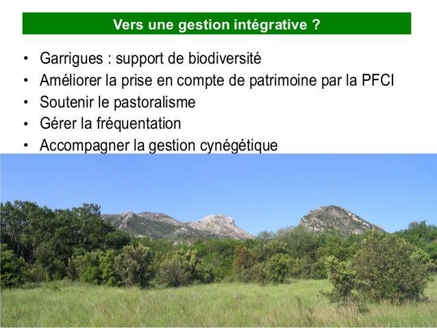 Vers une gestion intégrative ? • • • • •  Garrigues : support de biodiversité Améliorer la prise en compte de patrimoine p...