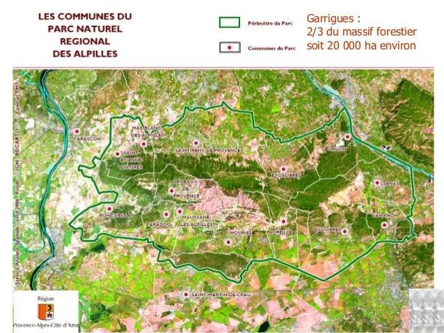Garrigues : 2/3 du massif forestier soit 20 000 ha environ