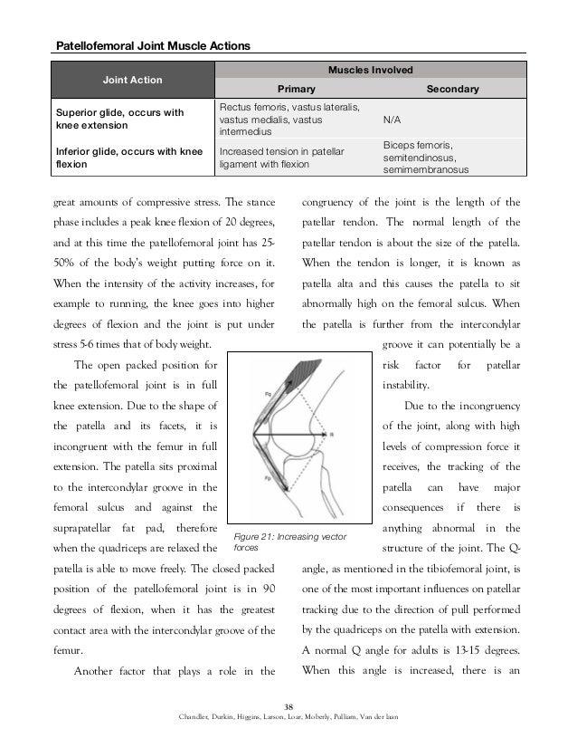 arthrology guide of the lower extremity 40 638?cb\=1446060265 kubota b8200 wiring diagram 27 wiring diagram images wiring