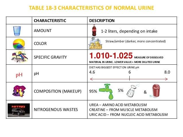 table 18 3 normal urine, Skeleton