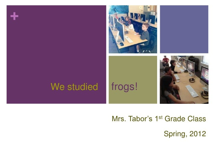 +    We studied   frogs!                 Mrs. Tabor's 1st Grade Class                                Spring, 2012
