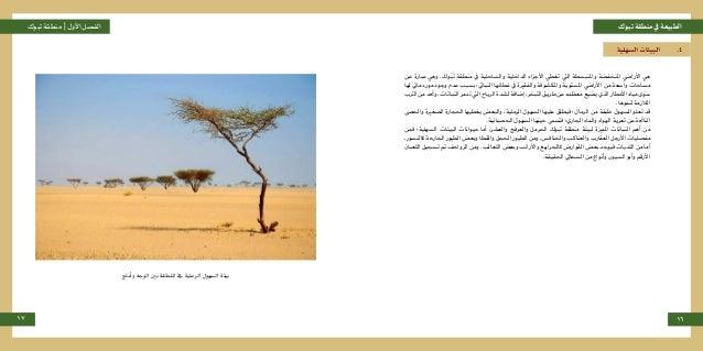 تبوكمنطقةيفالطبيعةتبوكمنطقة |األولالفصل 17 16 السهلية البيئات .4 عن عبارة وهي .وكُب َ ت ...