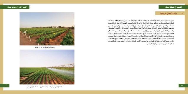 تبوكمنطقةيفالطبيعةتبوكمنطقة |األولالفصل 23 22 الزراعية األراضي بيئة .7 أنهاورغم.مرتفعةشبها...