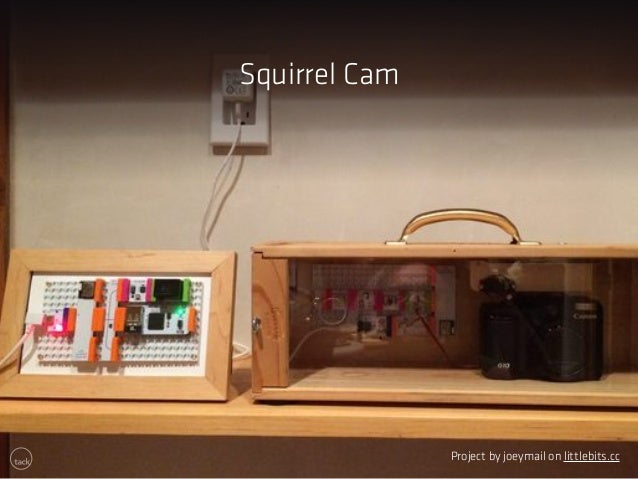 Squirrel Cam  Project by joeymail on littlebits.cc