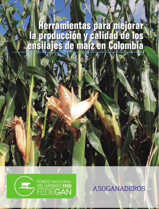 Herramientas para mejorar la producción y calidad de los ensilajes de maíz en Colombia  ASOGANADEROS  ASOGANADEROS