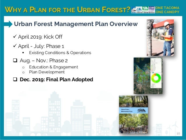 WHY A PLAN FOR THE URBAN FOREST? ONE TACOMA ONE CANOPY ✓ April 2019: Kick Off ✓ April - July: Phase 1 ▪ Existing Condition...