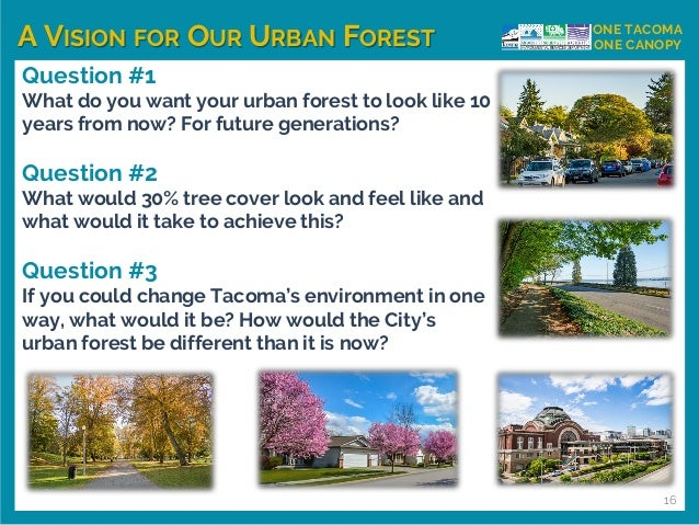 A VISION FOR OUR URBAN FOREST ONE TACOMA ONE CANOPY Question #1 What do you want your urban forest to look like 10 years f...