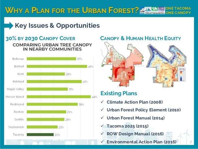 WHY A PLAN FOR THE URBAN FOREST? ONE TACOMA ONE CANOPY Key Issues & Opportunities 30% BY 2030 CANOPY COVER Existing Plans ...
