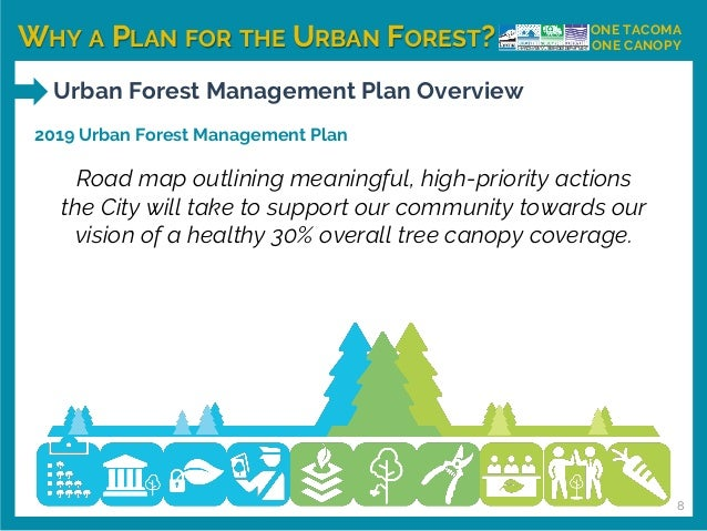WHY A PLAN FOR THE URBAN FOREST? ONE TACOMA ONE CANOPY Urban Forest Management Plan Overview 2019 Urban Forest Management ...