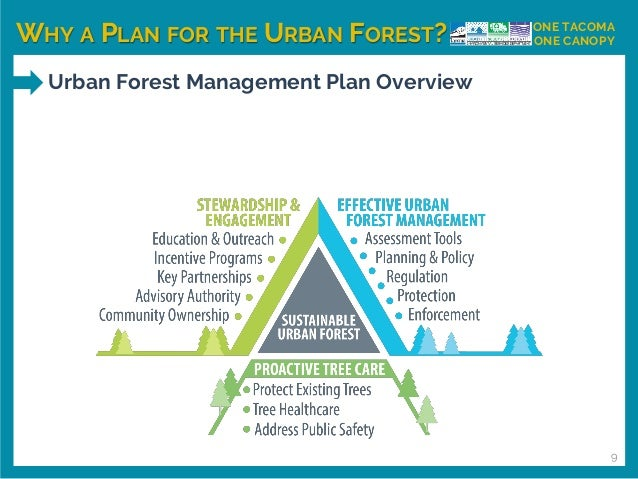 WHY A PLAN FOR THE URBAN FOREST? ONE TACOMA ONE CANOPY Urban Forest Management Plan Overview 9