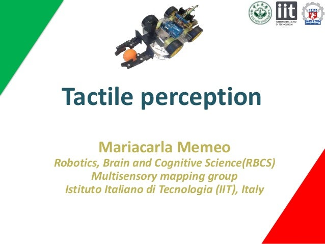 what is tactile perception