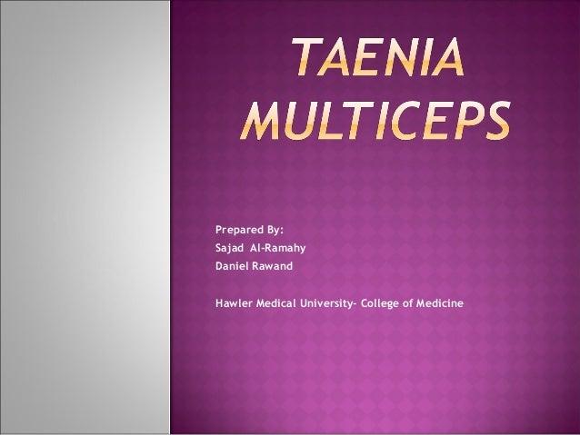 Prepared By: Sajad Al-Ramahy Daniel Rawand Hawler Medical University- College of Medicine