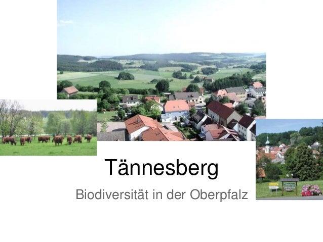 Tännesberg Biodiversität in der Oberpfalz
