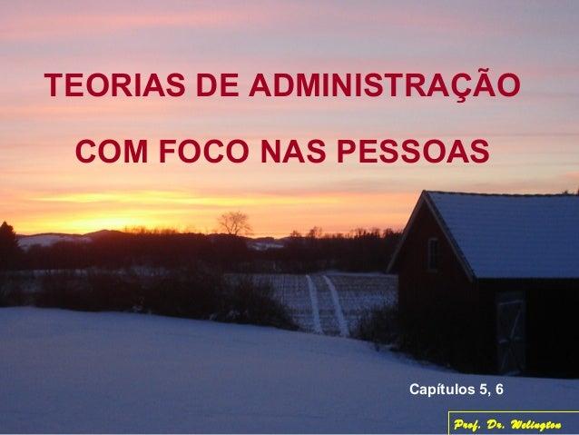 TEORIAS DE ADMINISTRAÇÃO COM FOCO NAS PESSOAS Capítulos 5, 6 Prof. Dr. Welington
