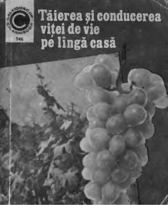 Redactor: Iu fia Chaţu           Prof. dr. doc. Teodor MartinTehnoredactor: Eugenia Cernaa                                ...