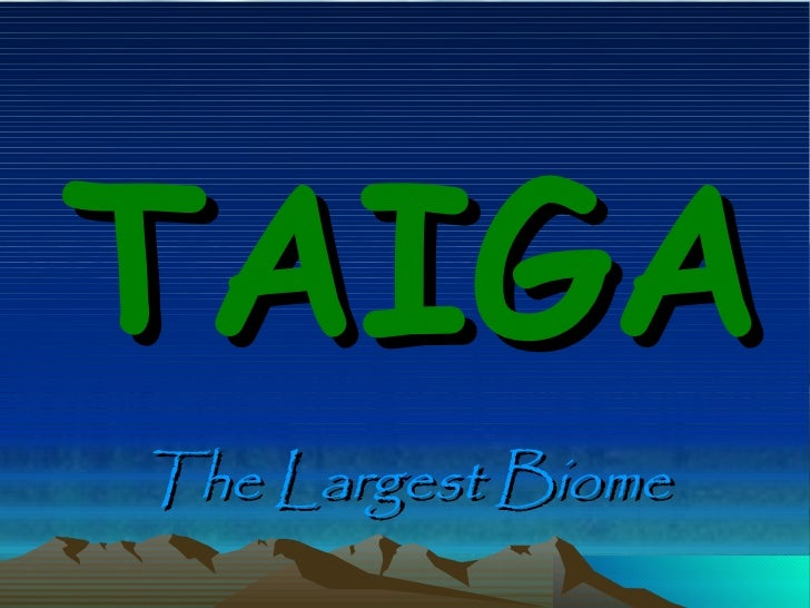 TAIGA The Largest Biome
