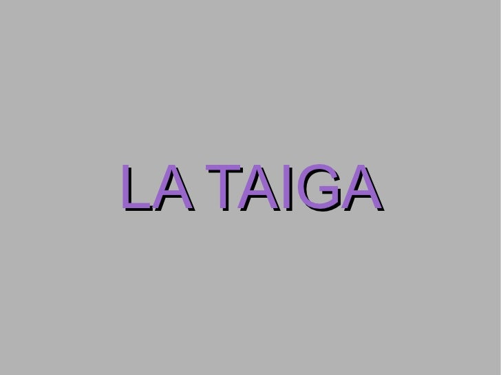 LA TAIGA