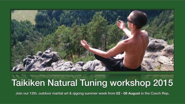 Taikiken Natural Tuning summer week 2016 in the Czech Rep.