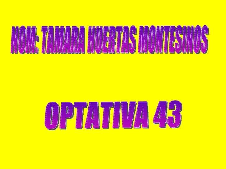 NOM: TAMARA HUERTAS MONTESINOS OPTATIVA 43