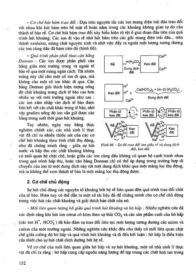 Tailieuchung sinh ly_hoc_thuc_vat_nxb_giao_duc_2009_vu_van_vu_312_trangp2_9121 Slide 3