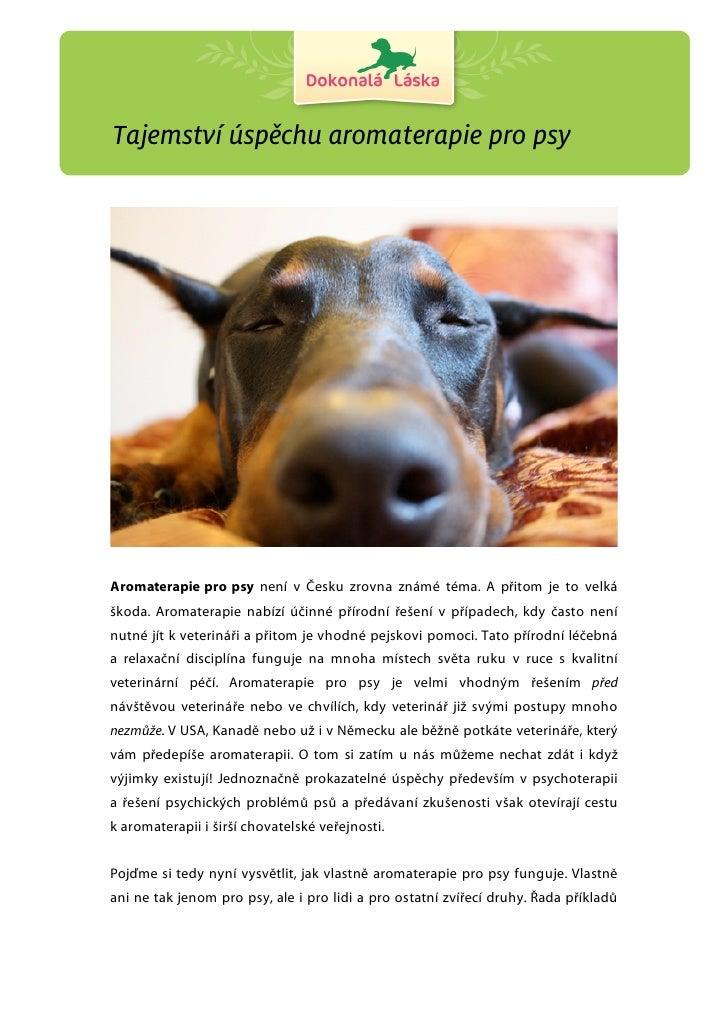 Tajemství úspěchu aromaterapie pro psyAromaterapie pro psy není v Česku zrovna známé téma. A přitom je to velkáškoda. Arom...