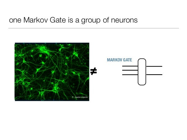 one Markov Gate is a group of neurons ≠= MARKOV GATE