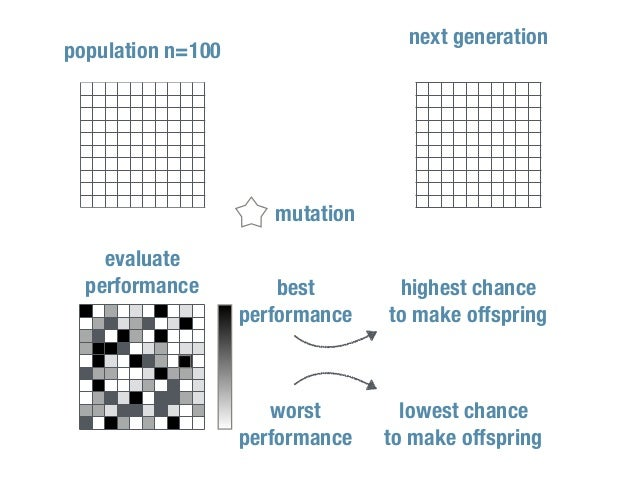population n=100 evaluate performance best performance worst performance highest chance to make offspring lowest chance to...