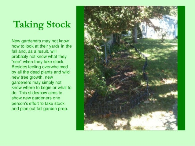 Taking Stock New gardeners may not know how to look at their yards in the fall and, as a result, will probably not know wh...